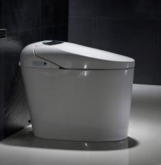 纳蒂兰卡N1561一体式智能马桶即热无水箱全自动智能坐便器 节能速热 300mm