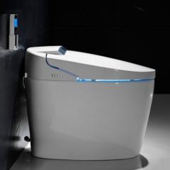 纳蒂兰卡卫生间N1580家用智能马桶全自动一体式电动坐便器带冲洗多功能马桶 300mm