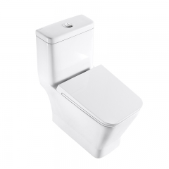 泰陶TA-8188陶瓷马桶 白色 305mm