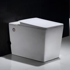纳蒂兰卡N9005方形无水箱马桶厕所坐厕宾馆酒店坐便器大冲力座便 305mm